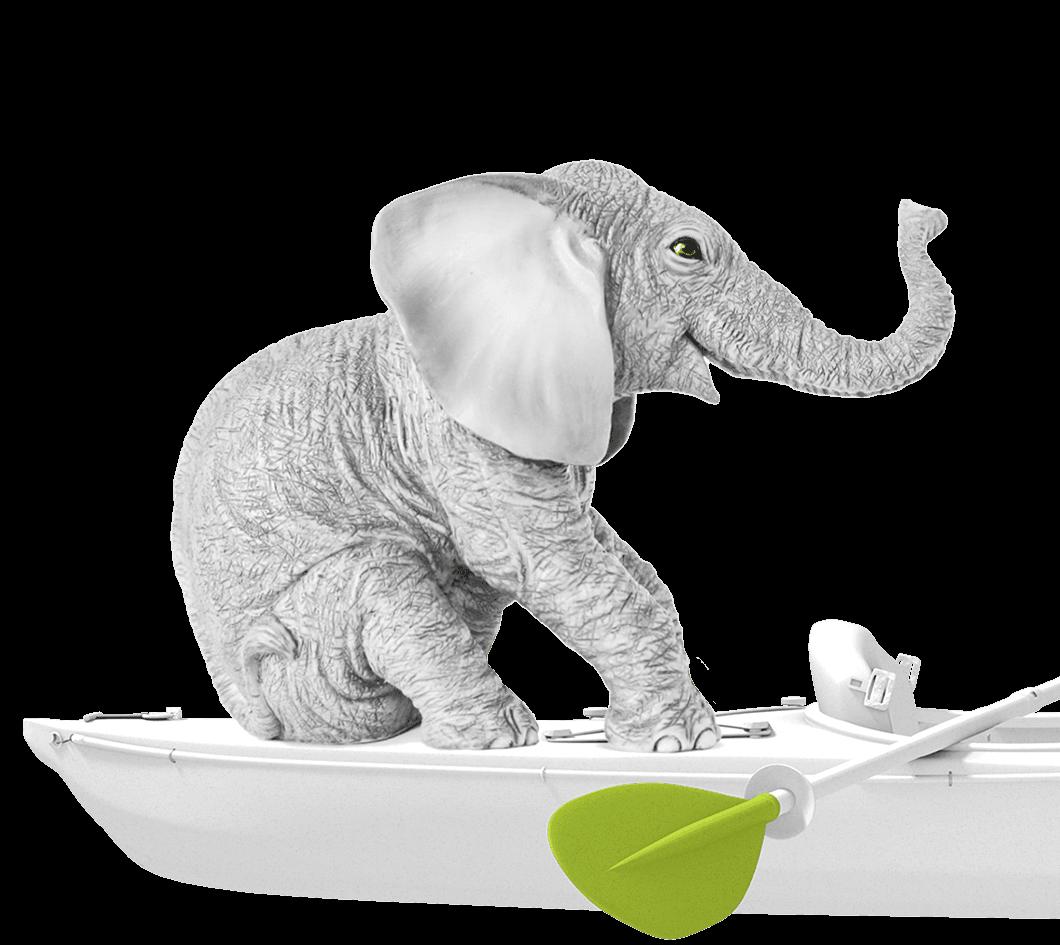 Immagine elefante. Kayak agenzia di comunicazione Milano